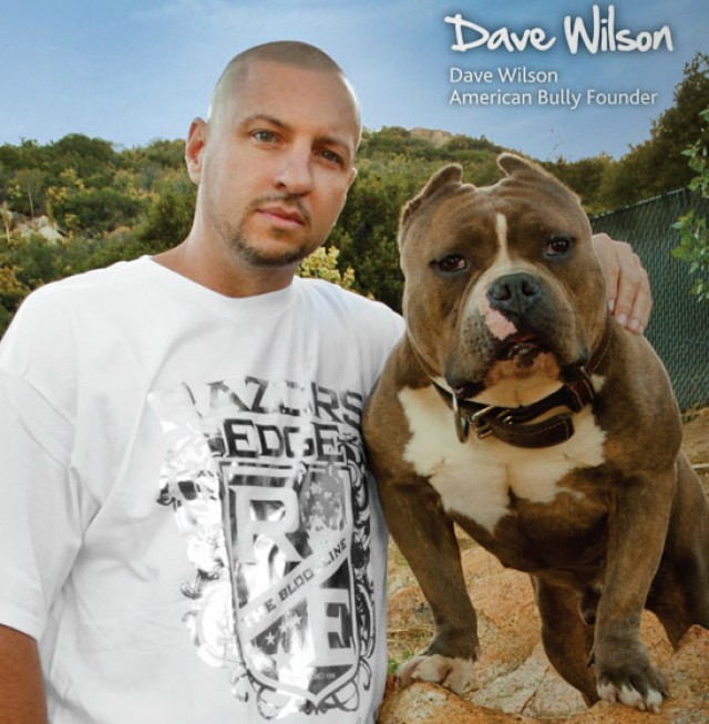 dave-wilson-american-bully-world