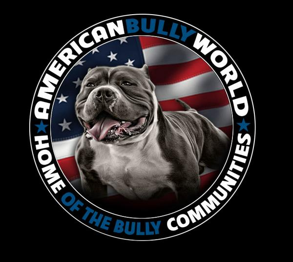 American Bully Questions & Answers - Ask Us Anything