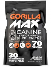 best-pitbull-supplement