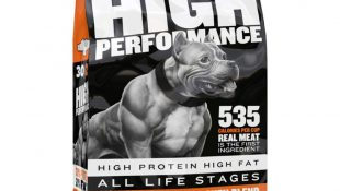5 Tips for choosing a high-quality pit bull food